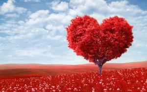 1420485923_holidays___saint_valentines_day_derevo_-_serdtse_057028_